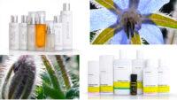 Ambient Naturkosmetik Produkte